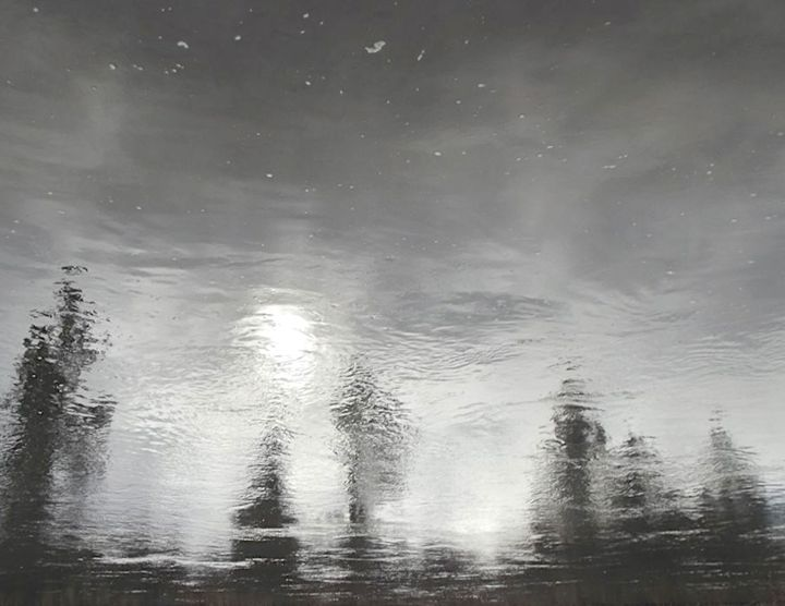 BLACK AND WHITE X: Water Reflection - Curtis H. Jones - Avalon Nature Photography