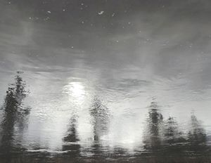 BLACK AND WHITE X: Water Reflection