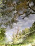 Original Fine Art Nature Photography
