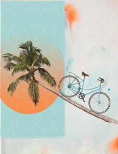 Bike and Palm
