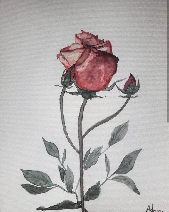 Rose - Lukas Adami Art