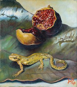 Salamander&pomegranate
