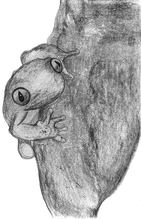 Baby Frog - Karu Design