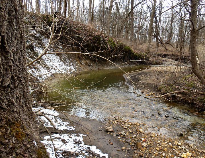 Rode Away Winter Creek Bed - Britni Stark
