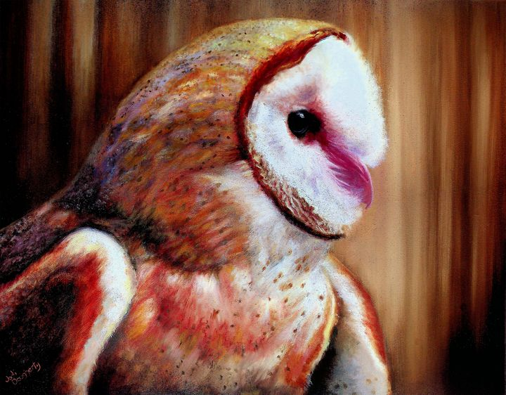 Barn Owl - Jodi Dougherty Art