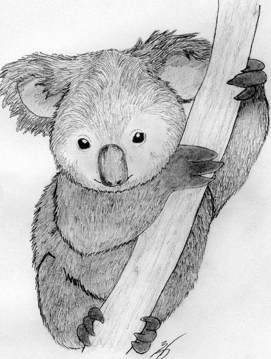 The Koala - Emili K Productions Custom Pencil Drawings