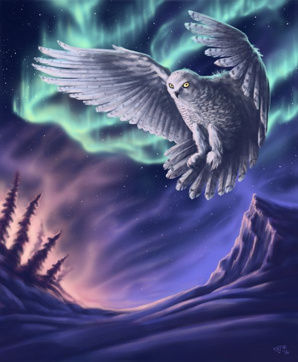 Snowy Owl - The Art of Theresa Wallace