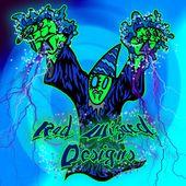 Rad Wizard Designs