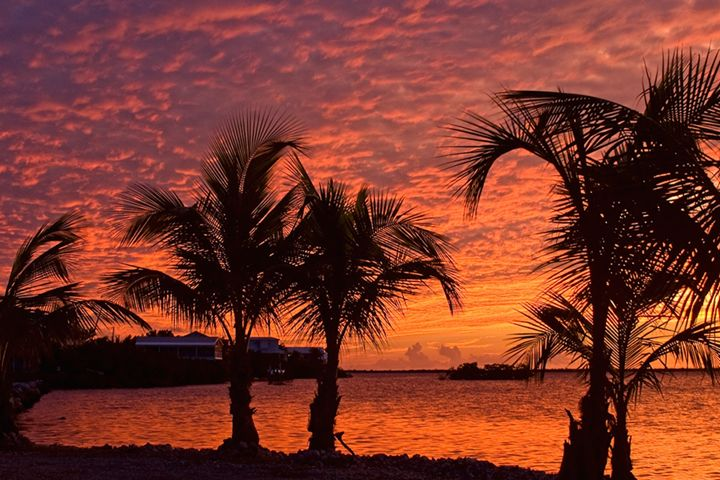 Flaming Sunset - Key West Images