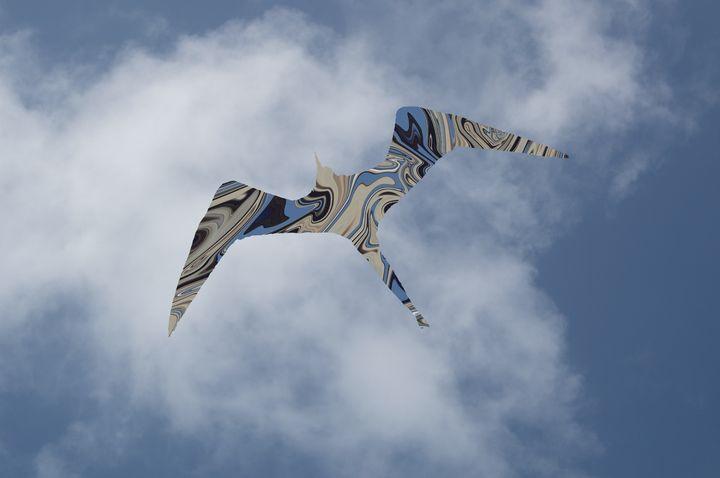 The Spirit of Frigate Bird - Intuography