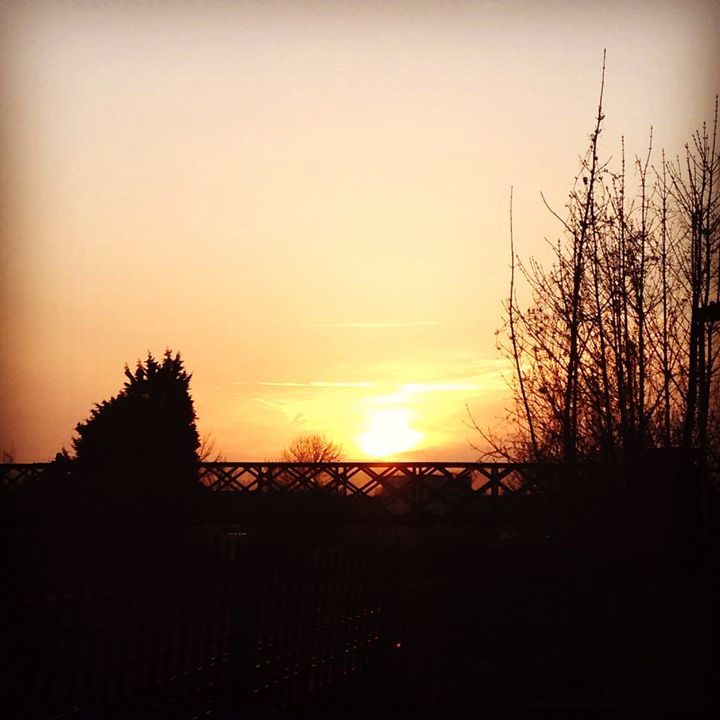 Sunset over the bridge - Katie lauton