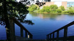 blue pond