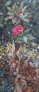 Garden Roze
