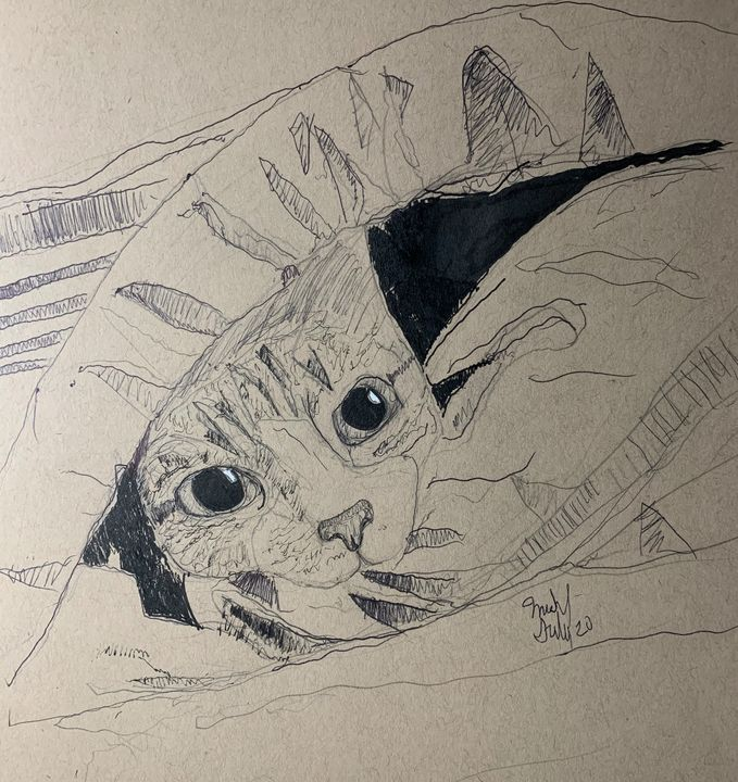 Cat or Mole? - Michael Griffin