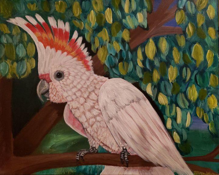 Major Mitchell's Cockatoo Bird - Stacy Ann Originals
