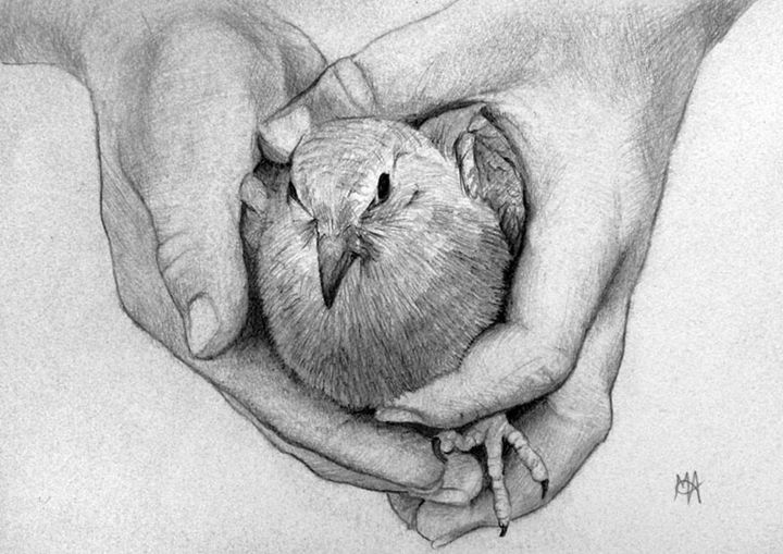 Bird in Hand - Artist Print - Marc Alexander