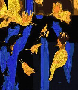 «hoopoes»(fragment2)