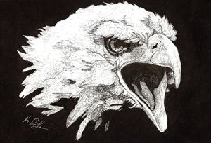 """Screaming Eagle"" - Art b K DeLeon"