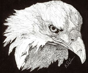 """Bird of Pray"""