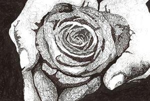 Lasting Bloom