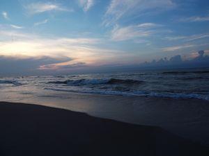 Morning Surf - Sue Heath Originals