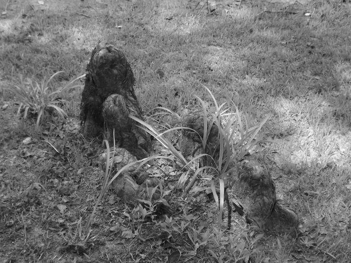 Knees In The Grass - Sue Heath Originals
