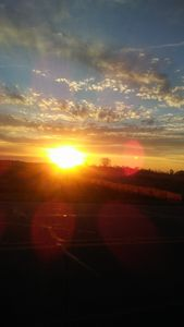 Sunrise - Sue Heath Originals