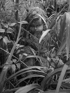 Among The Lillies - Sue Heath Originals