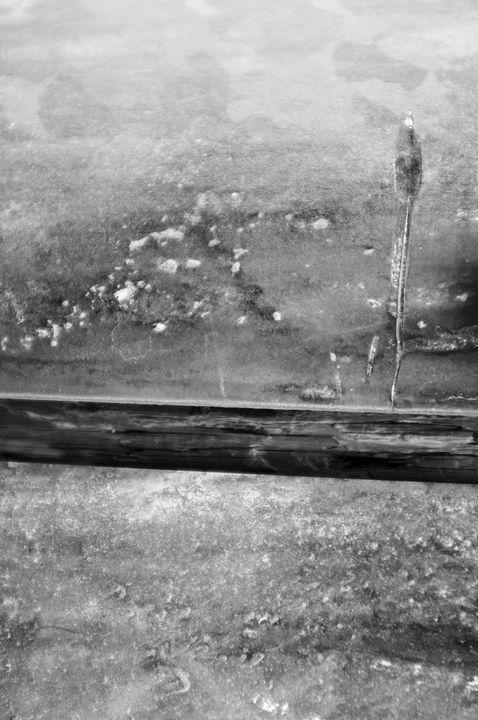 Wood texture - Kumoki