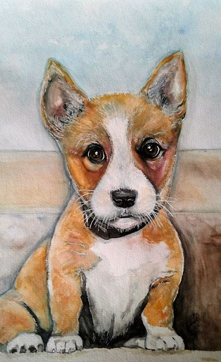 Corgi Boy - Out of Darkness: Diane Beatty