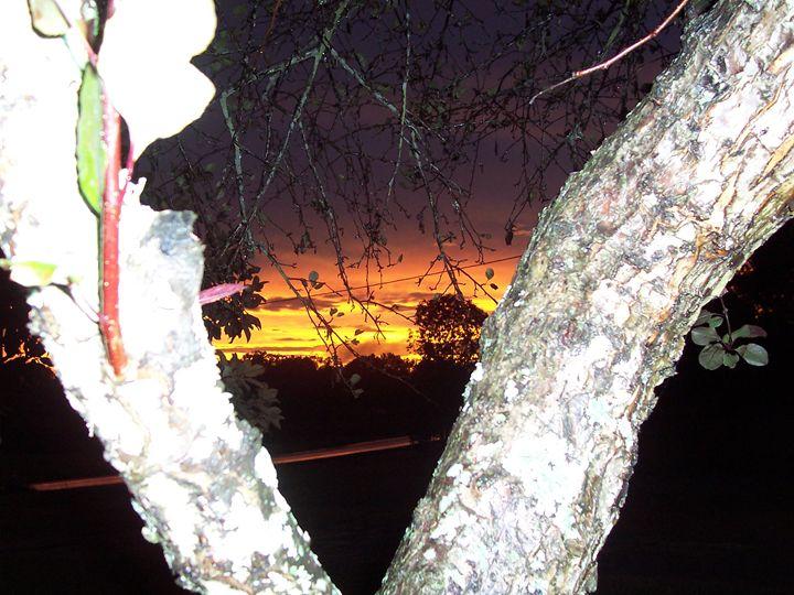 Evening Sunset - Starlight