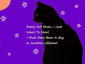 Every Full Moon, I Just Want To Howl