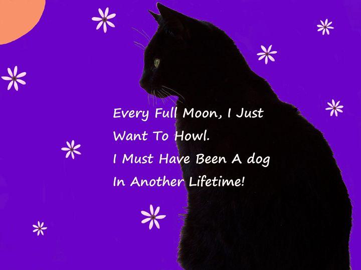 Every Full Moon, I Just Want To Howl - Starlight