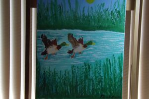 ducks taken off in the water