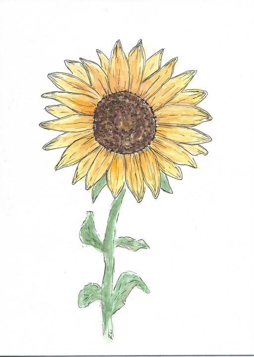 Shining Sunflower - Watercolor by Rhonda