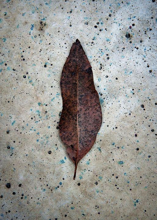 gum leaf on stone 1 - Greenstone Studio