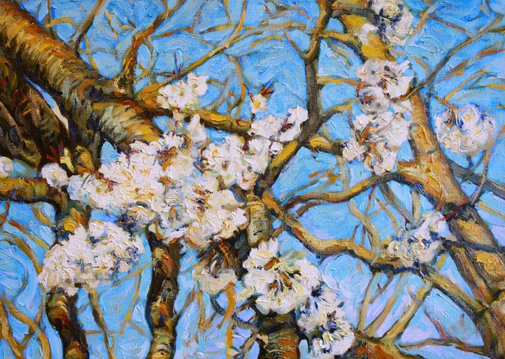 Cherry Tree in Bloom - Dusan Balara