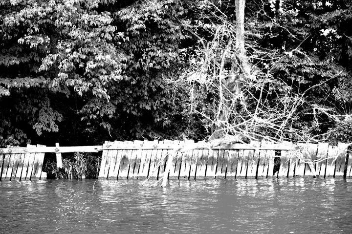 Indian Lake Island Fence - Boomerob photography
