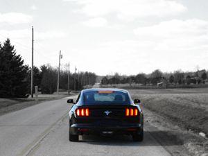 Empty Road Mustang