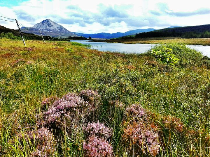 Mount Errigal - Pictures of Ireland