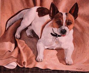 """""""Jack Russell Terrier"""" - Robert Beckwith Art"""