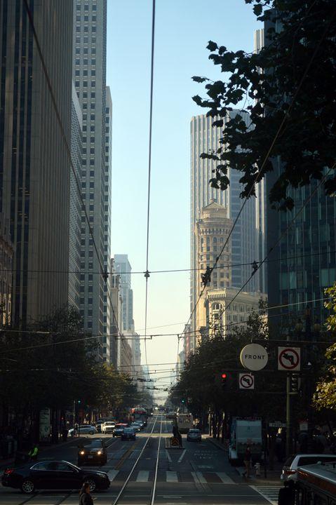 San Francisco's Web of Cables - Sandra Hagan