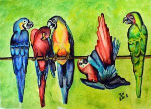 """""""Playful Parrots"""""""
