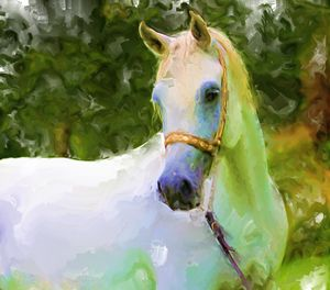 Painiting of a Horse