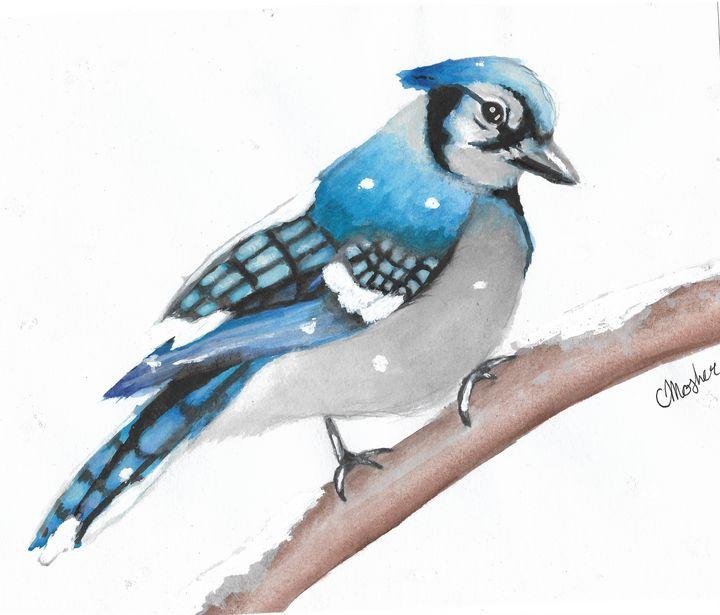 Blue Jay - Chelsey Mosher Art