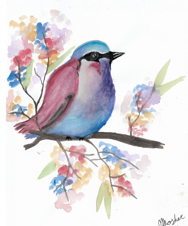 Pretty Colourful Bird - Chelsey Mosher Art