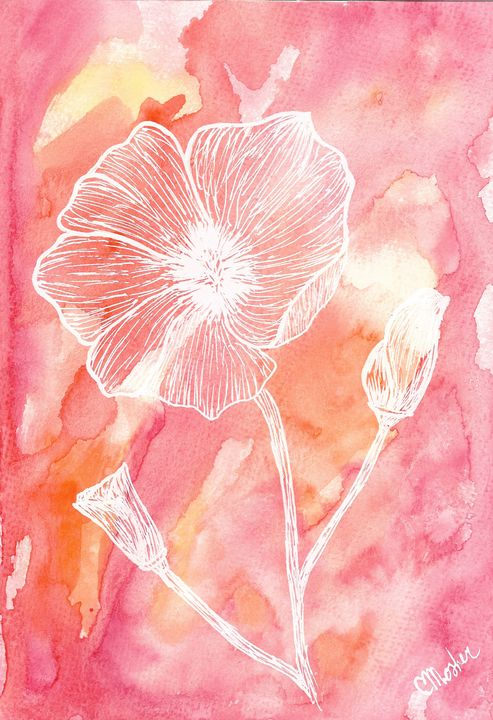 Poppy - Chelsey Mosher Art
