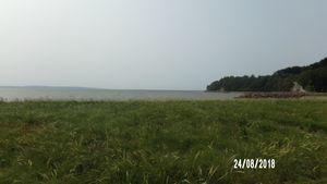 Plain Ocean