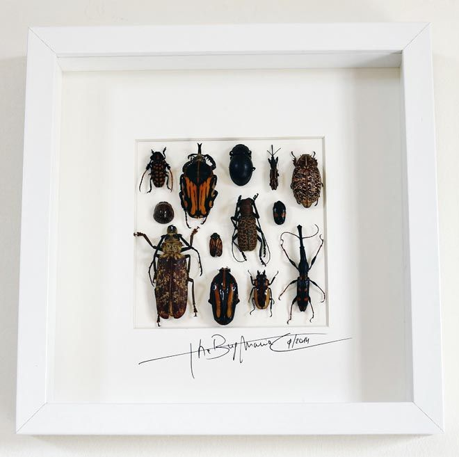 Mosaic with beetles - Alanscollectibles