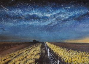 Milky way and the wheat field